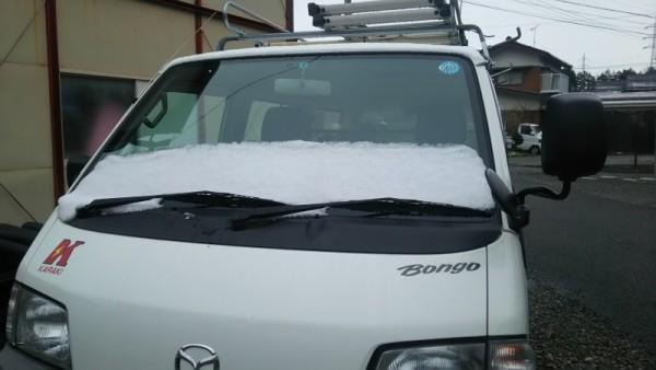 雪をかぶったボンゴ